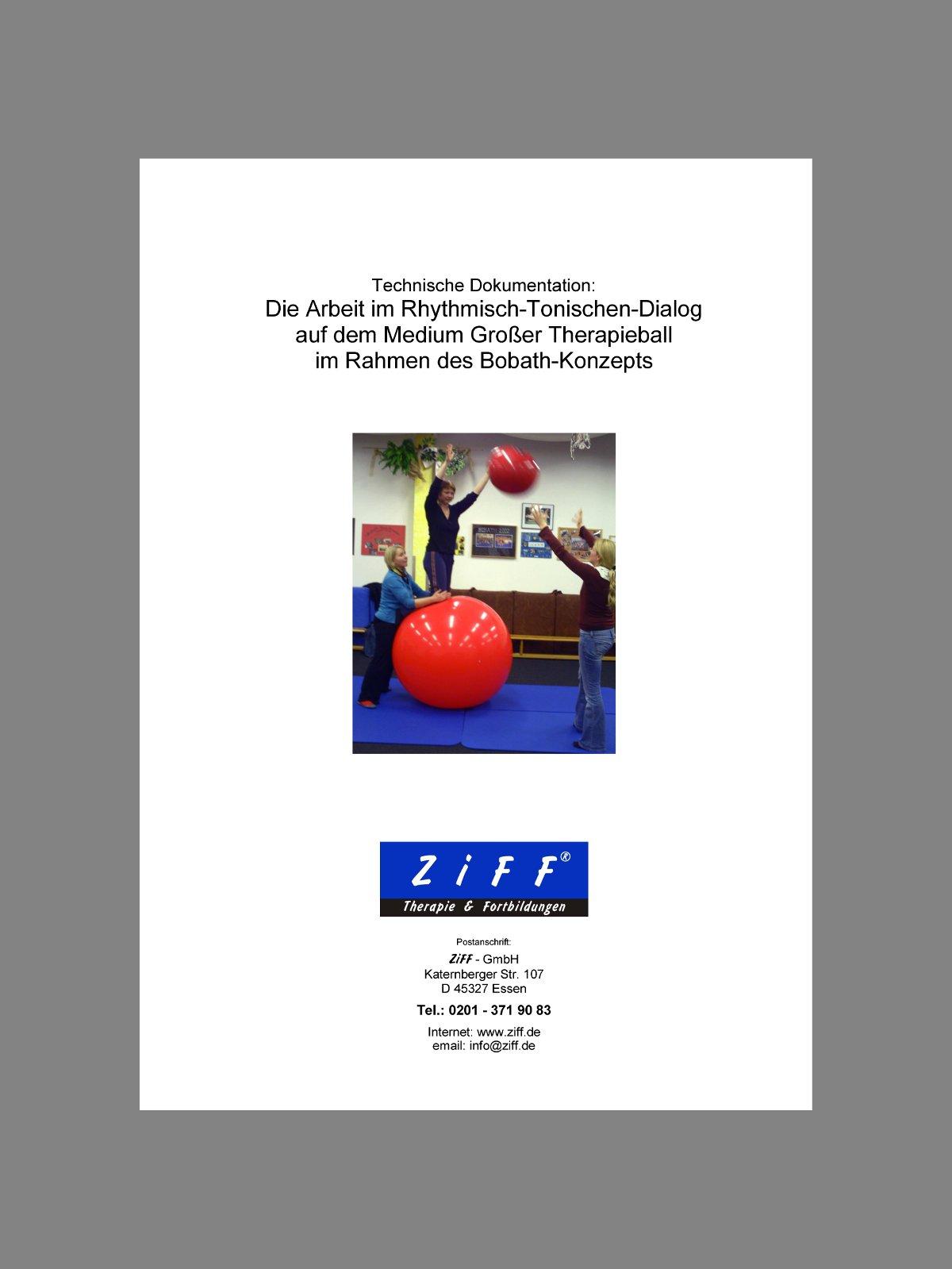 Sensorische Integration (SI) | ZiFF-Fortbildungen