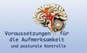 Kurs: Voraussetzungen für die Aufmerksamkeit und posturale Kontrolle