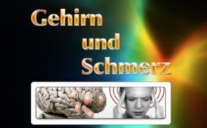 Kurs: Gehirn und Schmerz